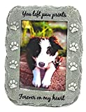 NewLifeLandia Pet Memorial Picture Frame Keepsake for Dog or Cat, Perfect Loss of Pet Gift for Remembrance and Healing (Grey)