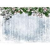 Fondo de fotografía de Tema de Navidad de Vinilo Retrato de niños Fondo de Navidad Accesorios de fotografía de Estudio A15 10x10ft / 3x3m
