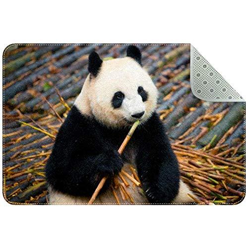 LORVIES Panda Essender Bambus-Teppich, rutschfest, für Wohnzimmer, Schlafzimmer, 78,9 x 50,8 cm