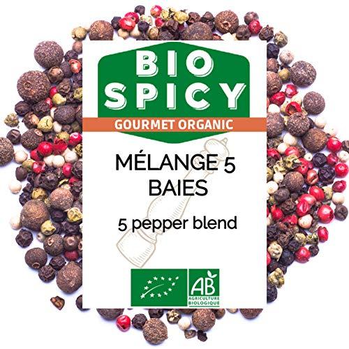 MÉLANGE 5 BAIES 100 gr - BIO SPICY - Épice BIO - Baies de grande qualité conditionné en France dans son sachet fraîcheur