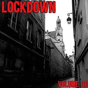 Lock Down Vol. 30