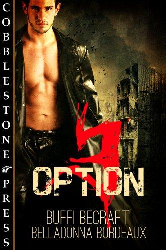 Option 3 (English Edition)