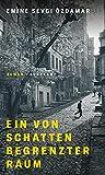 Ein von Schatten begrenzter Raum: Roman von Emine Sevgi Özdamar