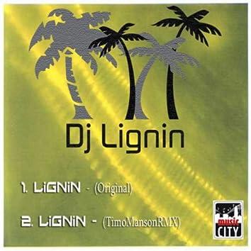 DJ Lignin