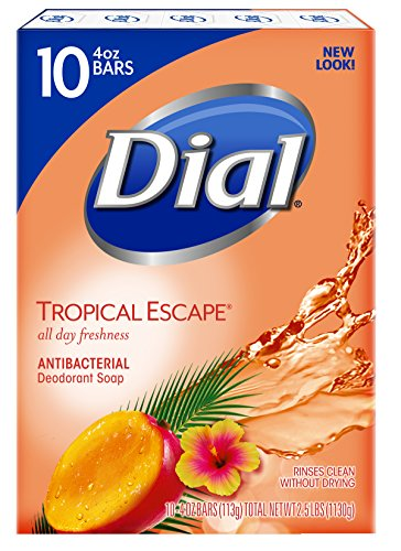 Dial Antibacterial Bar Soap, Tropical Escape, 4 Ounce, 90 Bars