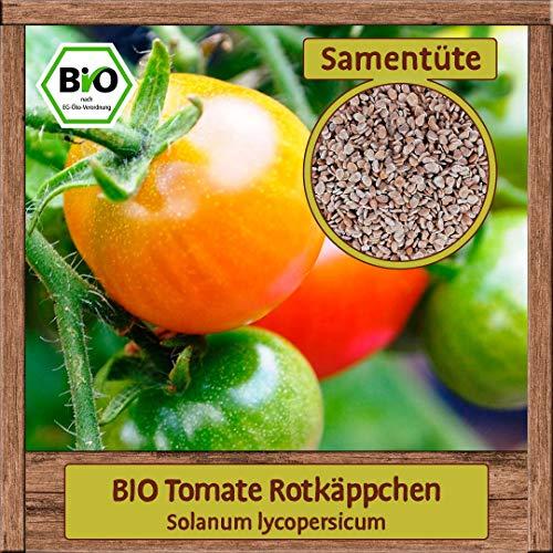 Samenliebe BIO Gemüse Samen Tomaten Rotkäppchen (Solanum lycopersicum)   BIO Tomatensamen Gemüsesamen   BIO Saatgut für 15 Pflanzen