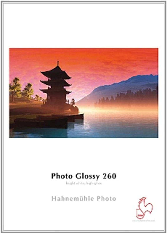 Hahnemühle 10641921 Photo Glossy Papier, 260 g m², DIN A3, 297 x 420 mm, hellweiß B00CBUM0RS | Vorzügliche Verarbeitung