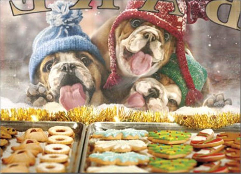 Avanti Weihnachtskarten, Motiv 3 Weihnachtskarten mit lustigen lustigen lustigen Bulldoggen, 10 Stück B015R06312  | Schön und charmant  7814aa