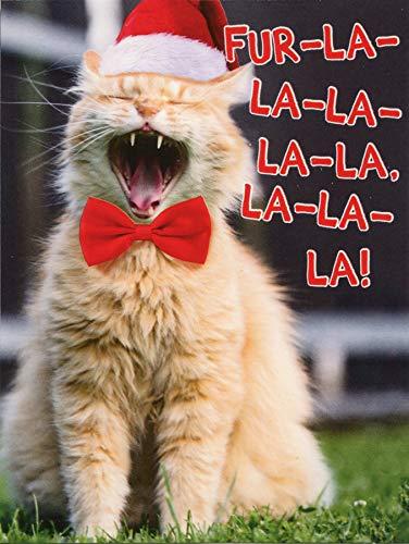 Recycled Paper Greetings Cat Singing Fur-La La La Package of 8 Funny/Humorous Christmas Note Cards
