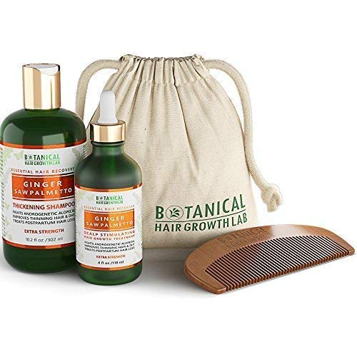 BOTANICAL HAIR GROWTH LAB - Scalp Treatment and Shampoo Gift Set - Ginger Saw Palmetto - Essential Hair Recovery - Anti-Inflammatory / Extra Strength - For Hair Loss Alopecia Postpartum DHT Blocker