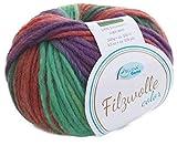Filzwolle Color Rellana Fb. 135, Filzwolle zum Stricken braun lila grün, mit Farbverlauf