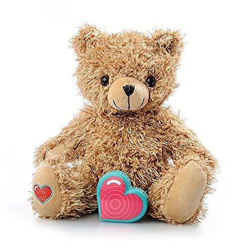 Voice Recording Teddy Bear