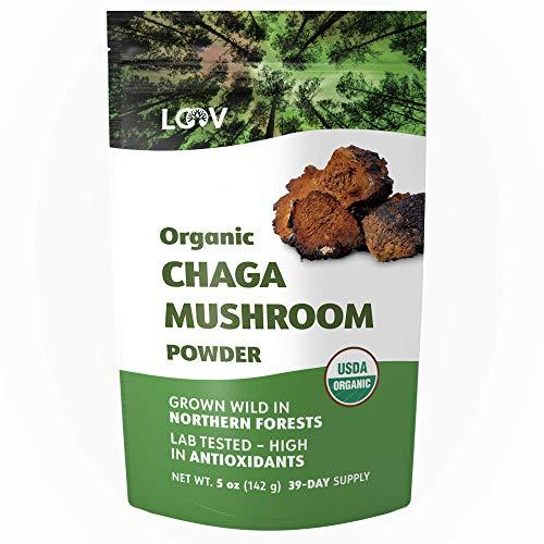 Poudre de Champignons Chaga Bio, 142 g, Récoltés à L'état Sauvage Dans les Forêts Vierges Nordiques, Crue, Riche en Antioxydants, Portions Pour 39 Jours, Certifiée Biologique par l'USDA/UE