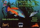 Guide découverte vie sous marine Atlantique immergeable - Gap