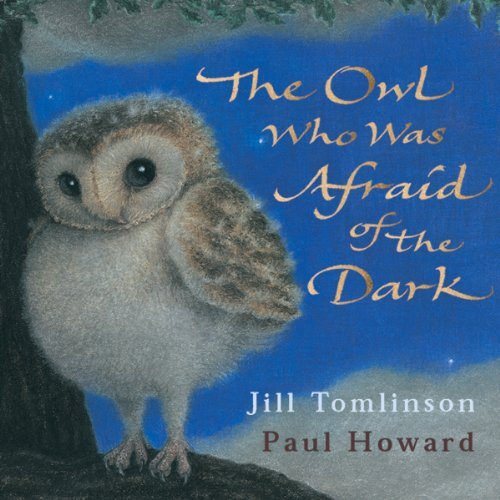 The Owl Who was Afraid of the Dark cover art, a u=cute, fluffy baby barn own perched on a tree, with a blue sky background and the title written in gold.