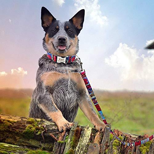 MMWW Gepersonaliseerde nylon halsband en riem set Op maat gemaakte honden ID-halsbanden Hondenriem touw voor kleine grote honden Gratis graveren-Red_M
