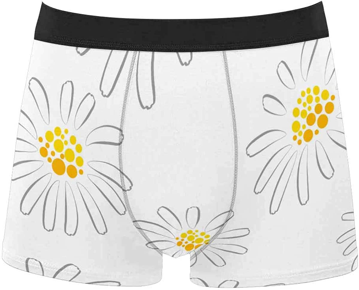 InterestPrint All Over Print Classic Fit Boxer Briefs for Men, Youth Cartoon Musical Instruments