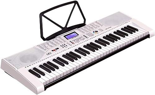 LIUFS-Tastatur Multifunktions-Keyboard Für Kinder, Das An Das Mikrofon-Headset Mit Dem Piano 61-Key Angeschlossen Ist (Größe   Beginner Version+Zither)