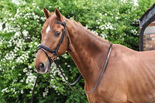Weiß Pferd Equestrian Flash Vault Trensenzaum–Reiten Outdoor Schule Hack, Braun, Pony