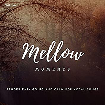 Mellow Moments - Tender Easy Going And Calm Pop Vocal Songs, Vol. 20
