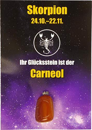Edelstein-Sternzeichenanhänger | Glücksstein für die Sternzeichen mit Infokärtchen (Skorpion - Carneol)