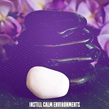 Instill Calm Environments