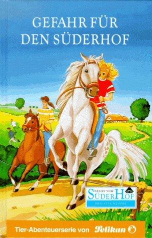 Neues vom Süderhof, Bd.20, Gefahr für den Süderhof