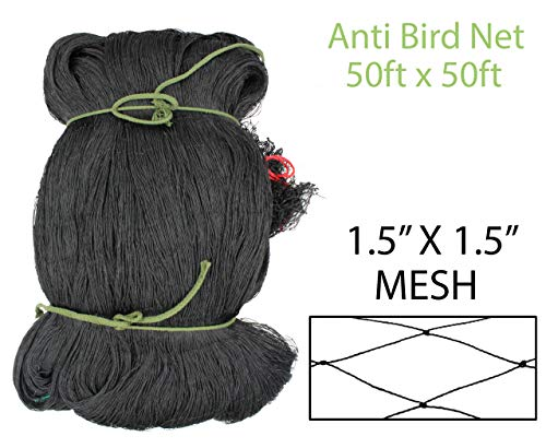 "Amaranth Nets 50' x 50' Bird Netting with 1.5"" x 1.5"" Mesh Size, High-Density Polyethylene (HDPE) UV Stabilized Material"