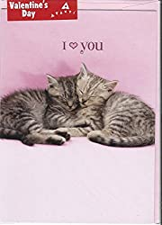 Cool Valentines Day Card No.5: Card with Two Kittens