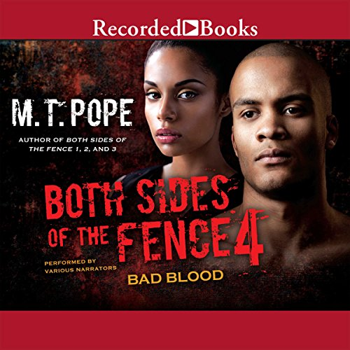Both Sides of the Fence 4 audiobook cover art