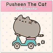 Grupo Erik editores- Calendar 201830x 30Pusheen The Cat
