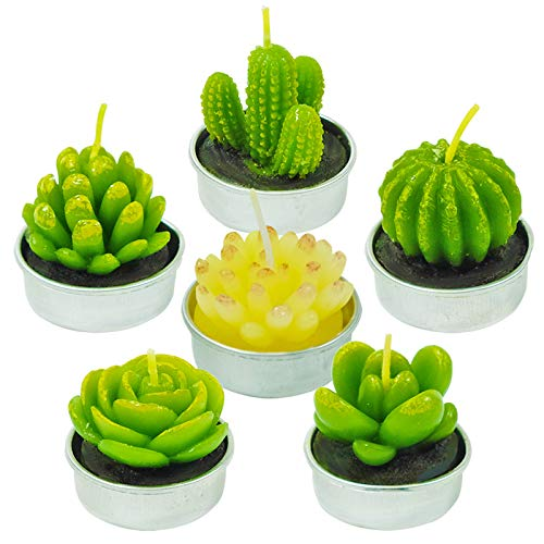 NANAOUS 6 Packs Mother's Day Specialty Cactus Tealight Candles, Handmade Delicate Scented Home Candles Flameless Aromatherapy Birthday Party Wedding Relaxing Candle Bath Spa Meditation Gift (NO.5)