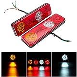 SANWAN Fanali posteriori posteriori 2 luci di freno, 12 V, 6 funzioni, 36 LED, impermeabile, per rimorchio, caravan, camion, materiale ABS