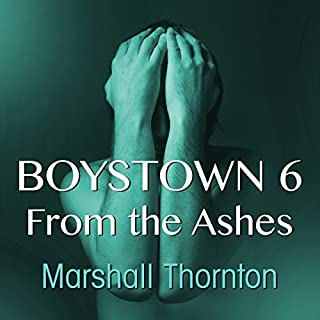 Boystown 6: From The Ashes audiobook cover art