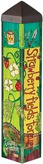Studio M PL1073 Garden Art Pole, Strawberry Fields Forever