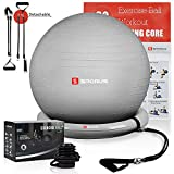 Sporus Exercise Ball Chair (65cm), Yoga Ball for Office and Fitness with Stability Ball Base & Workout Poster, Improve Balance, Core Strength & Posture for Gym & Home Silver [Quick Pump Included]