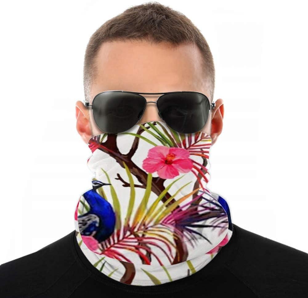 Headbands For Men Women Neck Gaiter, Face Mask, Headband, Scarf Beautiful Vector Seamless Pattern Peacock Tropical Turban Multi Scarf Double Sided Print Yoga Headband For Sport Outdoor