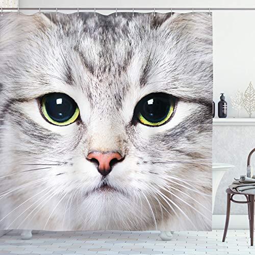 ABAKUHAUS Gato Cortina de Baño, Cara de un Gatito doméstico, Material Resistente al Agua Durable Estampa Digital, 175 x 200 cm, Multicolor