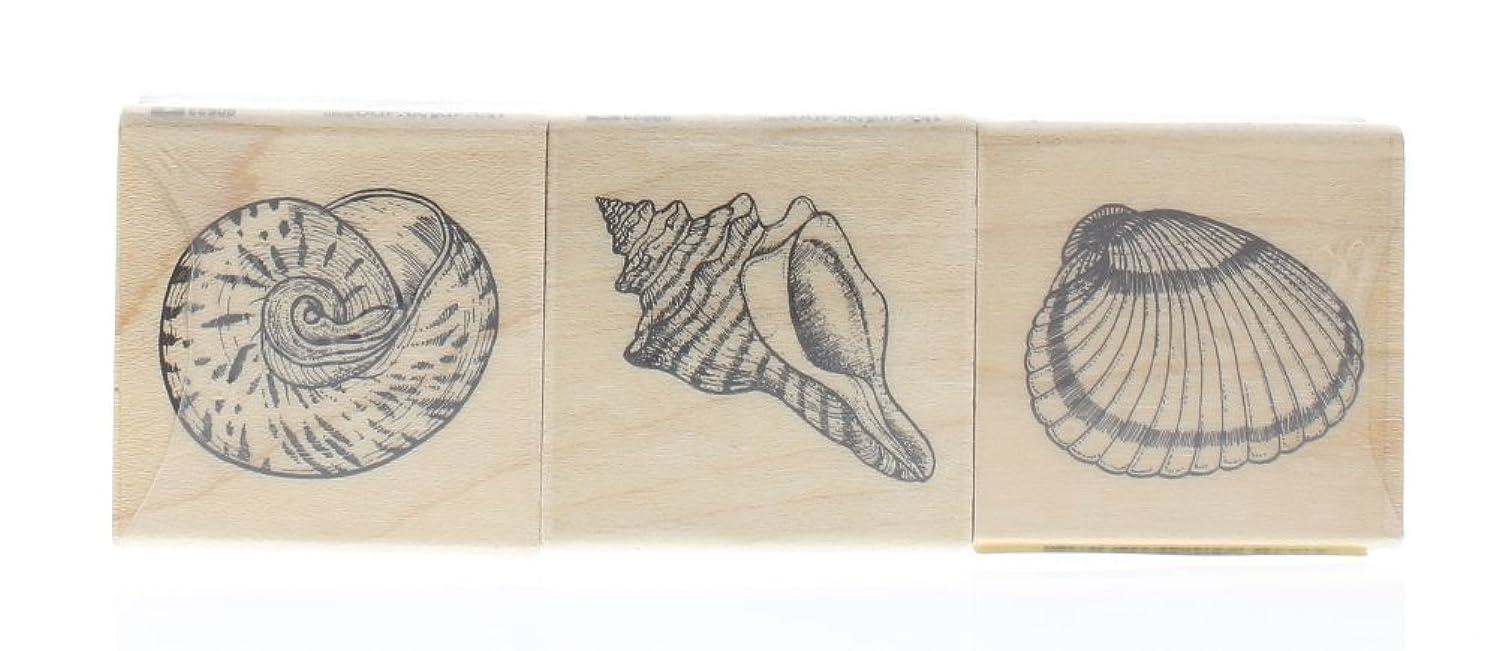 SEASHELLS (SET OF 3) Rubber Stamp InkaDinkaDo