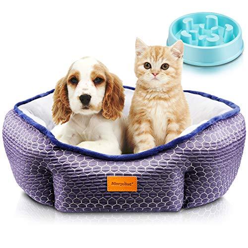 Cama Gato, Cama Perro Pequeño, Cama para Mascotas con Suave Cojín Desmontable, Lavable a Máquina, Sofá Cama para Gatos y Perros Pequeños y Medianos (M: 60 * 60 * 18 cm) + Comedero Lento Para Perros