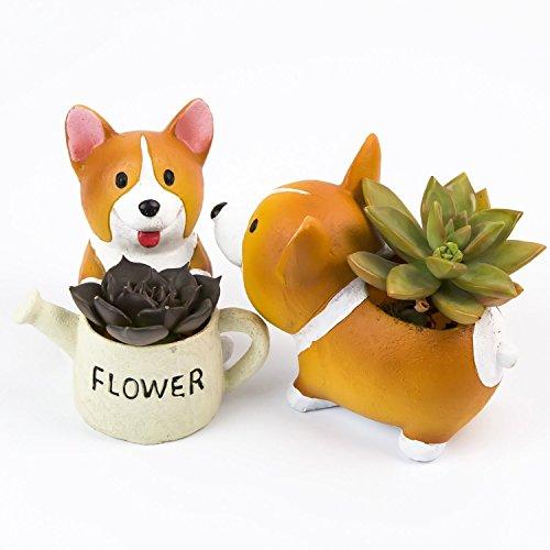 SUN-E Schöne Corgi Hund geformt Pflanze Dekor Sukkulenten Dekorative Blumentopf 2 Im Set Geschenkset