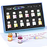 ESSSHOP Glass Dipped Pen Ink Set-Crystal Pen with 12 Colorful Inks for Art, Writing, Signatures,...