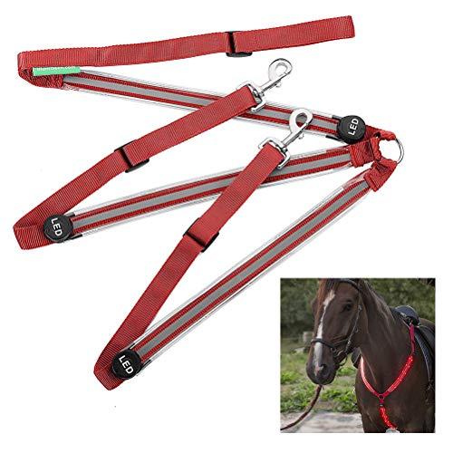 Fliyy Leuchtender Brustgurt für Pferde, USB wiederaufladbar, LED, blinkend, Brustgeschirr, Halsbänder, Nachtausrüstung, beleuchtet Reiten, Schutzausrüstung (rot)