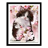 DIY Paint by Numbers for Adults Kids Cute Cat Cat Flower Oil Painting Kit Acrylic for Adults Kids,Arts Craft for Home Wall Decor 40x50cm