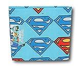DC Comics Superman Fat Quarter (18 x 21) by DC Comics