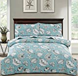 3-Piece Coastal Seashells Quilt Set Full/Queen,Tropical Sea Fan Starfish in Cyan Background,Seaside Quilted Bedspread Coverlet, Nautical Bedding Set Bedroom Decor for All Seasons (White,Full/Queen)