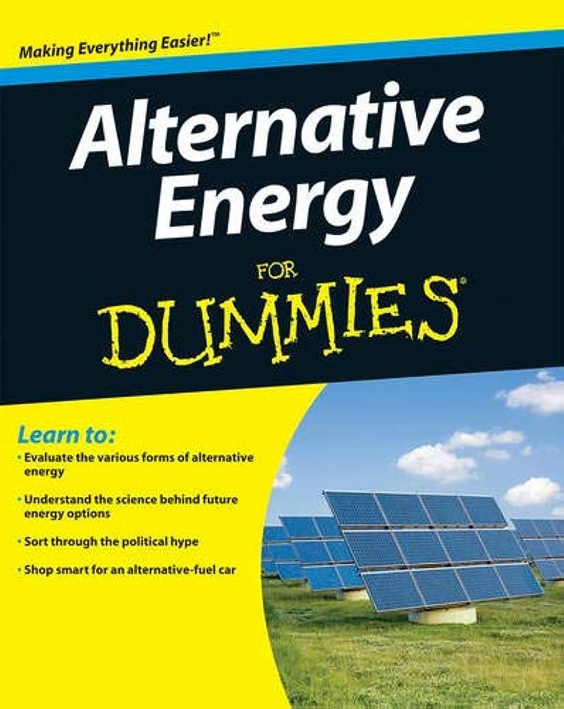 一瞬ブラスト乳剤Alternative Energy For Dummies (For Dummies Series)
