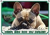 Französische Bulldogge - Exklusives 1,5mm Dickes Metallschild, DIN A5 thumbnail