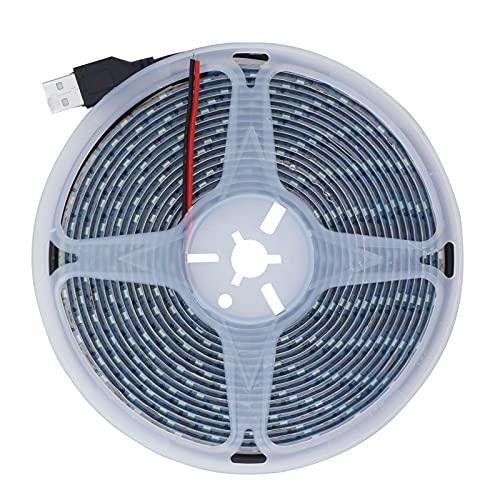 Tira de luz LED, luz decorativa de la cinta de las luces LED para los pasillos