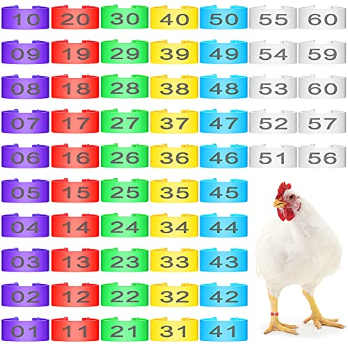 120 Pieces Chicken Leg Rings Numbered Poultry Leg Band Colorful Plastic Bird Leg Bands 16 mm Clip-on Chicken Ankle Ring for Turkey Ducks Chicks Chicken Guinea Pigeons Goose Identification, 6 Colors